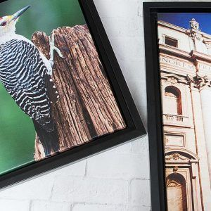 Floating Framed Gallery Wraps